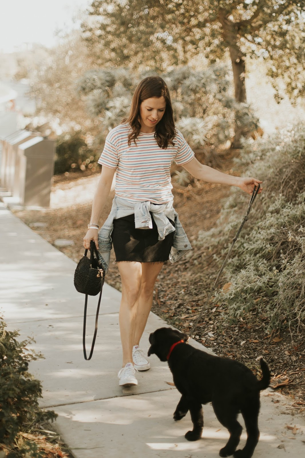 puppy blogger outfit