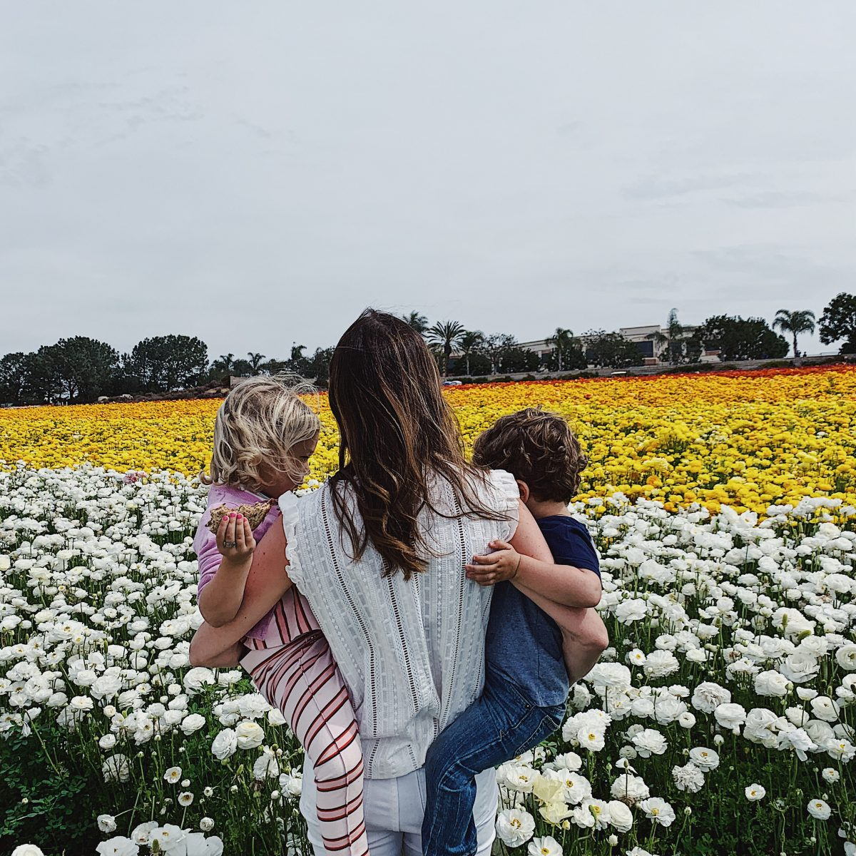 kids in flower fields